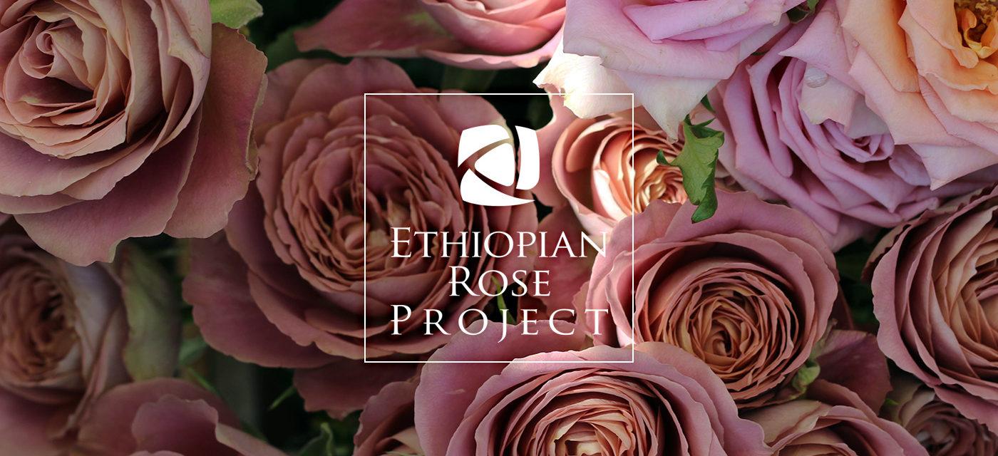 Ethiopian Rose Project/エチオピアンローズ プロジェクト